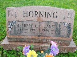 Herbert E Horning