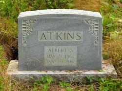 Albert Sidney Atkins