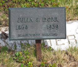 Julia Drisko <i>Smith</i> Dorr