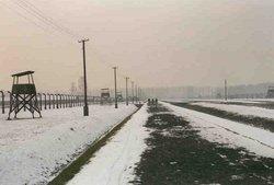 Hesje <i>Blok</i> de Winter