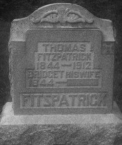 Bridget <i>Murphy</i> Fitzpatrick