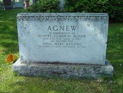 Robert Gordon Agnew