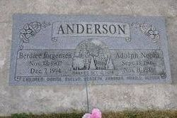 Adolph Nephi Anderson