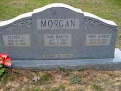 Annie Mae <i>Harper</i> Morgan