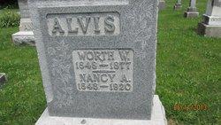 Nancy Ann <i>Andrews</i> Alvis