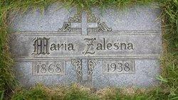 Mary Zalesna