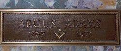 Argus Brutus Adams