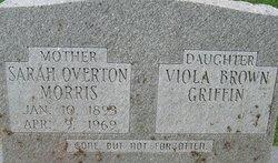 Viola <i>Overton</i> Brown Griffin
