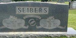 Pleas Seibers