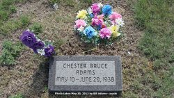 Chester Bruce Adams