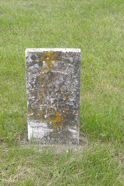 Mary Louisa Moore