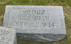 Elizabeth <i>Meikel (Michael)</i> Ellinger