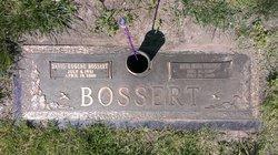 Alta Aloe <i>Jones</i> Bossert