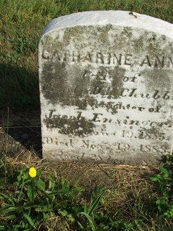 Catharine Ann <i>Ensinger</i> Chubb