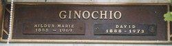 David Ginochio