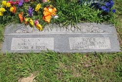 Roy E Davidson