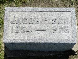 Jacob Fisch