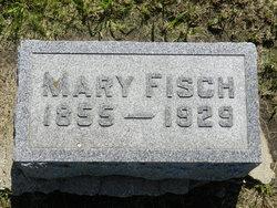 Mary <i>Hendry</i> Fisch