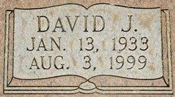 David Joe Shedd