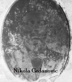 Nikola Grdanovic