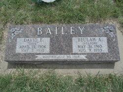 David E Bailey