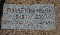 Pinkney Harbert