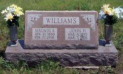 Magnola <i>Carmichael</i> Williams
