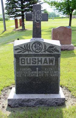 Louisa Elizabeth Eliza <i>Ferguson</i> Bushaw