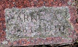 Arne A. Sagen
