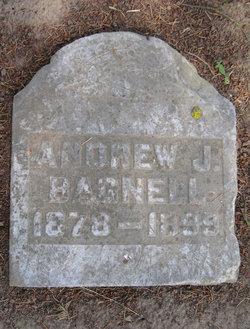 Andrew J Bagnell