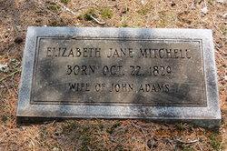 Elizabeth Jane <i>Mitchell</i> Adams