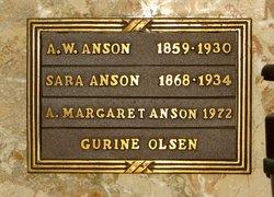Andrew W Anson