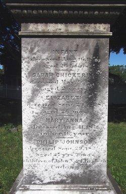 Elizabeth Cushing