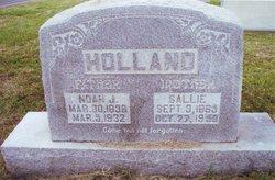 Sallie <i>Gray</i> Holland