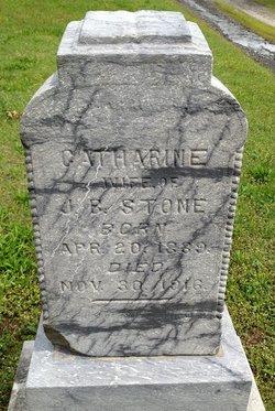Catharine E. <i>Merritt</i> Stone