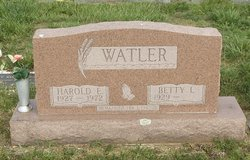 Harold E Watler