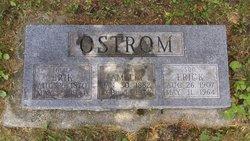 Erik Ostrum