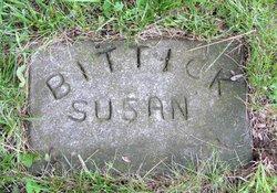 Susan Jane <i>Waltrip</i> Bittick