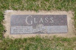 Franz Frank Glass
