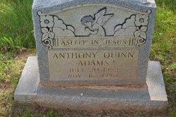Anthony Quinn Adams