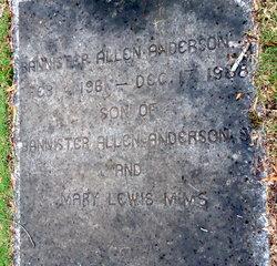 Bannister Allen Anderson, Jr