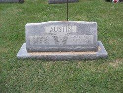 Mary Jane <i>Wooden</i> Austin