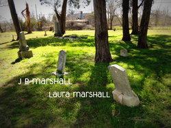 Laura <i>Davis</i> Marshall