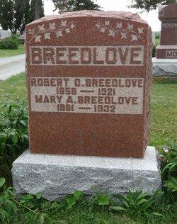 Mary Ann <i>Cox</i> Breedlove