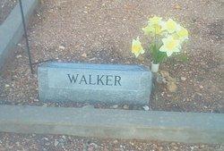 Wanda Faye <i>Walker</i> Thomson