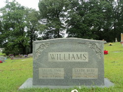 Sarah Ann Sallie <i>James</i> Williams