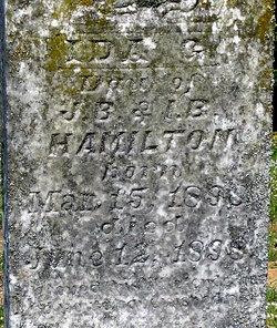 Ida G Hamilton