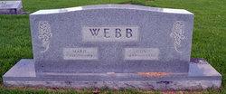 Guy Webb