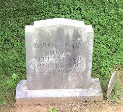 Carrie H. Adams