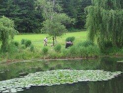 Lark's Meadow Cemetery